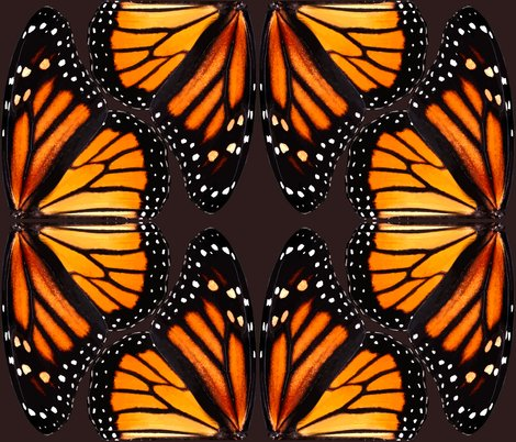 Rrrrrrrrbutterfly9_vector1_shop_preview
