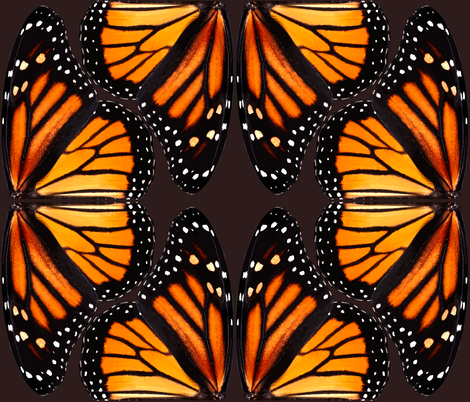 Orange Monarch Butterfly Wings - smaller fabric by bonnie_phantasm on Spoonflower - custom fabric