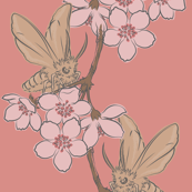 Moth and cherry blossom - peach