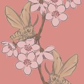 Moth and cherry blossom - peach