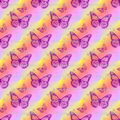 Butterfly_Pinyell