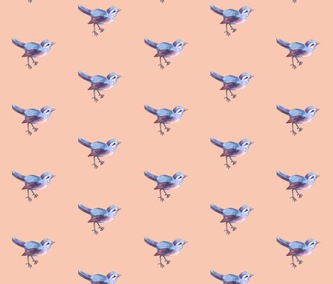 Little Songbird on Peach