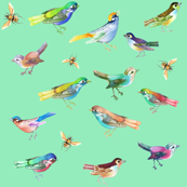 Songbirds in Mixed Colors on Mint