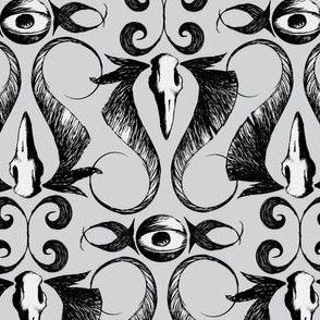 occularis - gray