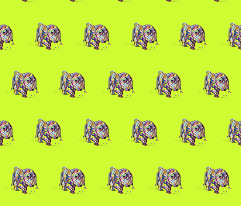 Multicolor Dappled Dachshund on Neon Yellow