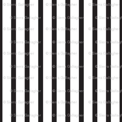 Black and White Stripes Vertical