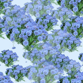 Blue Awakening_tilecolorway