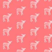 Dear Deer Watermelon Pink