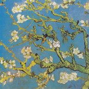 Rvan_gogh_-_almond_blossoms_1890_shop_thumb