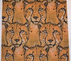 Rmaple_cheetah_comment_430480_thumb