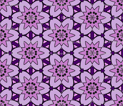 Purple Fool's Starflower