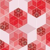Hexagon1 coral