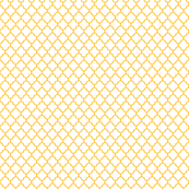 pumpkin orange and white quatrefoil