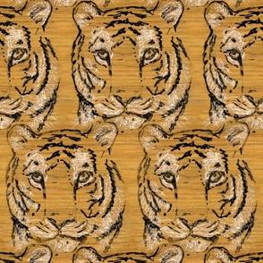 Walnut Tiger