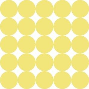 Circlicious Circle