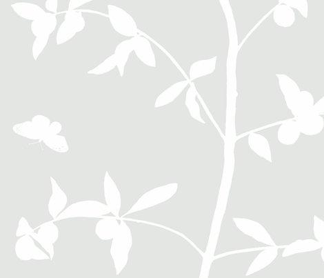 Jenny_simple_kumquat_on_haze_shop_preview