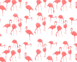 Flamingos_thumb