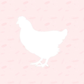 Mini Clara Chicken White on Pink