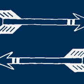 Navy Arrows
