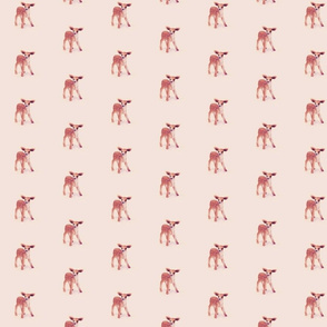 Little Fawn in Powder Pink
