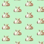 Bunnies in Love, Mint Green