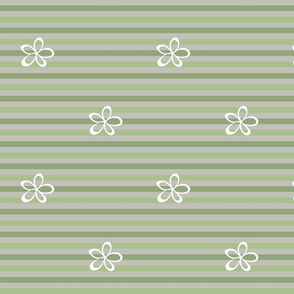 stripy_cascade