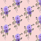 Roses, Watercolor Purple Pink