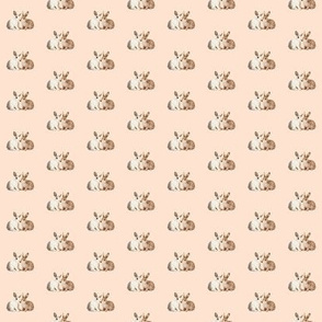 Bunnies in Love, Soft Pink Beige