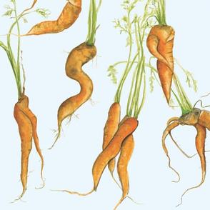 carrot_fabric
