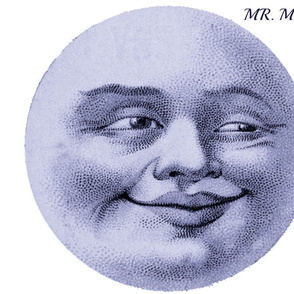 MR. MOON PILLOW
