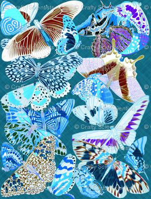 butterfliesinvert3