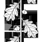 oakleaf_acorn_nocolor