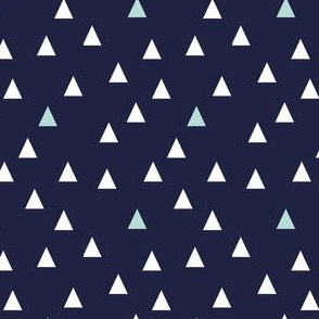Grey & Mint Triangles