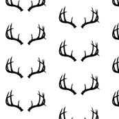 Deer Antlers in Black