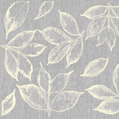Grey and Cream leaves