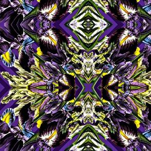 Iris Cluster