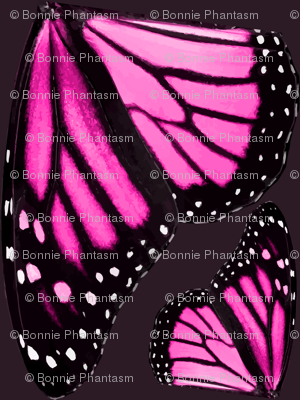 Giant Pink Monarch Butterfly Wings