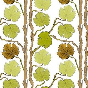 grape-stripes750