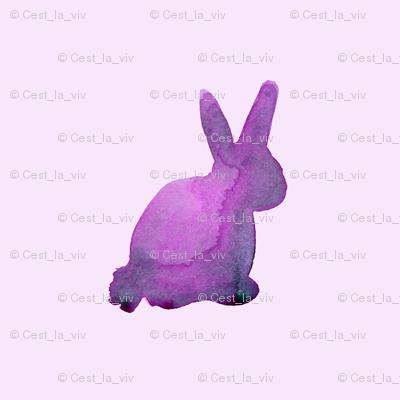 cestlaviv_bunnyViolet