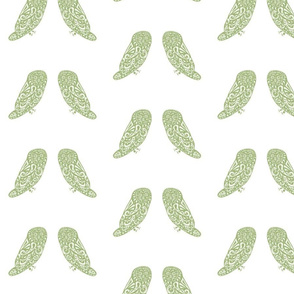 Owls - Lime/White