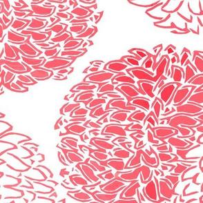 Ming Chrysanthemum in Bright Pink