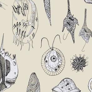 Giant Protozoa Bestiary Beige