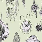 Rrrprotozoacollective5_shop_thumb