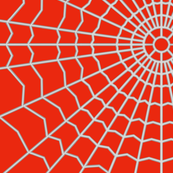 Spider Web on Bright Red