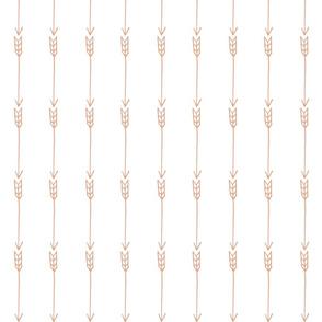 Linear Arrows