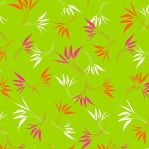 Hyacinthe 2