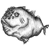 fish Sketch Print