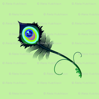peacock_feather_palesage