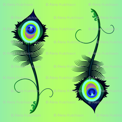 peacock_feather3