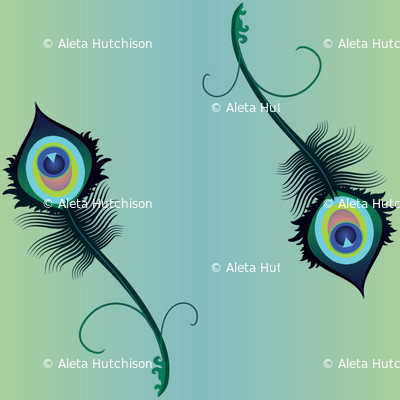 peacock_feather5